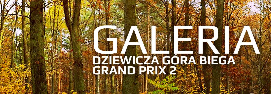 GALERIA_gp2