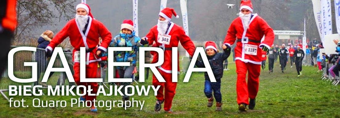 GALERIA_mikolakowy